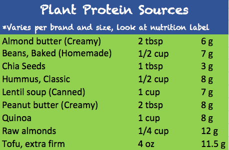 plant protein source